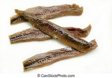 anchovies - Canned anchovies on white background