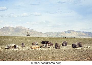 ancien, autel, altai, ortolyk., village, russie