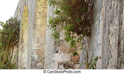 Ancient aqueduct tropical Jamaica - Historic arches seaside...
