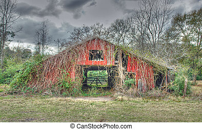 An ancient barn is in danger of being overrun by weeds
