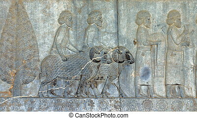 Stone carving Bas Relief from ruins of ancient Persepolis (Pars / Fars) capital city of the Persian empire (now in Iran). 5th Century B.C. Near Shiraz, Iran.