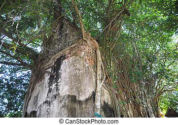 Ancient buddha statue at Wat Bang Kung in Samut Songkhram, ...