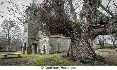 Ancient chestnut tree and old chapel - Winter time over...