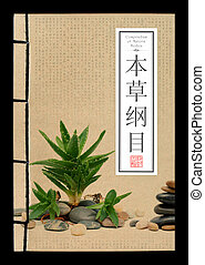 Ancient Chinese medical books