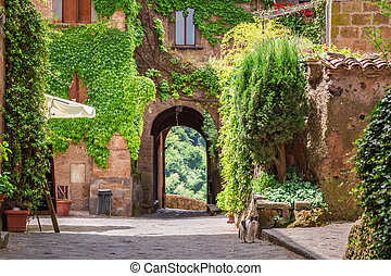 Ancient city overgrown with ivy in Tuscany