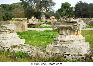 Ancient columns in Archea Olympia, the site where the...