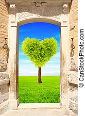 Ancient door and heart shape tree on green field