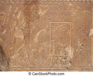 Ancient Egytpian Hieroglyphics
