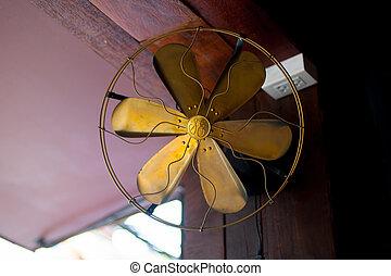 Ancient Fan at Ayutthaya World Heritage site, Thailand.