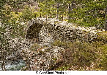 Ancient Genoese bridge over Tartagine river in northern ...