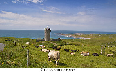 ancient irish castle by sescape,west ireland - photo ancient...