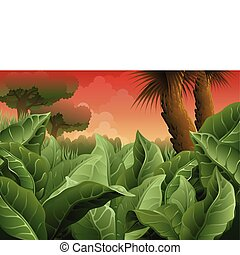 ancient jungle background