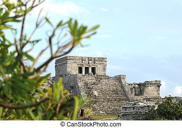 Ancient Mayan in Mexico