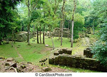 ancient mayan temple ruins in honduras