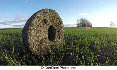 Ancient millstone in crop field, time lapse 4K