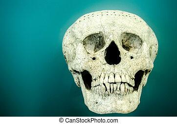Ancient skull of a mayan man