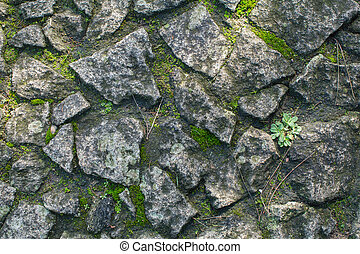 Ancient stone pavement with moss, texture background.