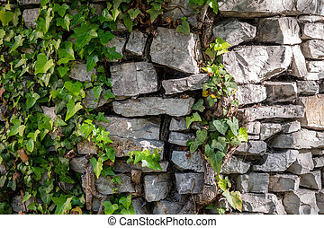 Ancient stone wall overgrown with grass.