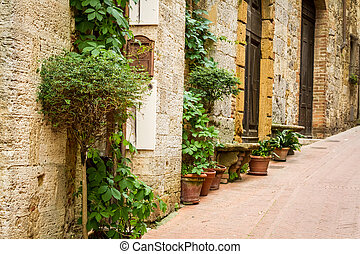 Ancient street decorated with flowers, Italy