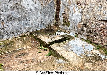 Ancient toilet in Polonnaruwa in Sri Lanka