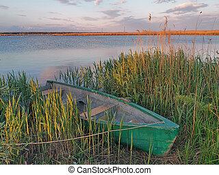 ancré, rivage, danube, bateau