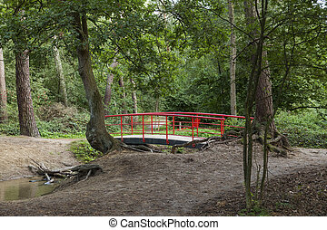 red japanese bridge in garden