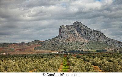 andalucia, landscape
