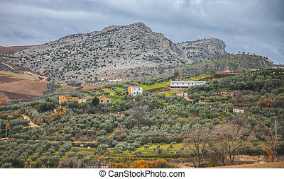 View of rural Andalucia, Spain