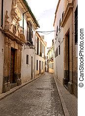 andalucia, strade, meridionale, villaggio, bianco, spagna
