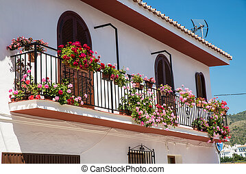 Andalusian balcony - Andalusian  balcony full of flower pots