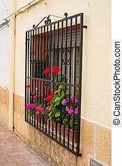 Andalusian window - Charming old Andalusian village window...