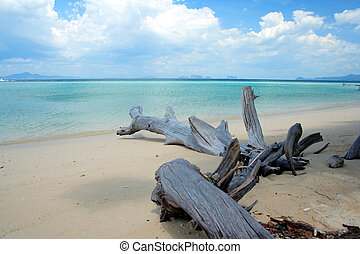 Andaman Beach II - Andaman beach while high noon
