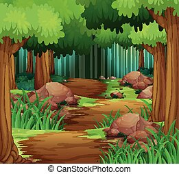 andando gita, pista, foresta, scena