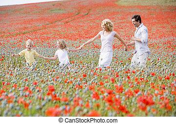 andar, família, campo, segurar passa, papoula, sorrindo