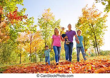 andar, família, junto, floresta, durante, dia