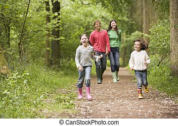 andar, família, segurar passa, caminho, sorrindo