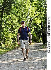 andar homem, ligado, floresta, rastro