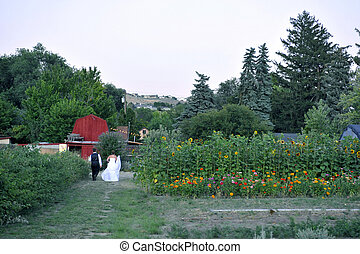 andar, jardim, noivo, noiva, barn., vermelho