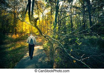 andar, madeiras, homem