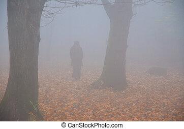 andar, nevoeiro, mulher