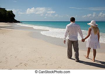 andar par, ao longo, a, litoral