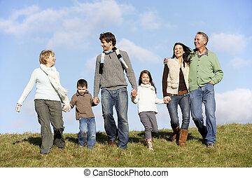 andar, parque, família