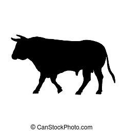 andar, pretas, touro