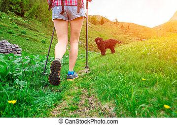ande, el, montañas, de, niña, con, perro