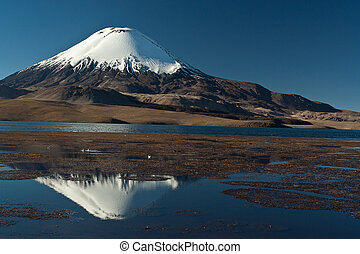 Andean volcano Parinacota - National Park Lauca , lake...