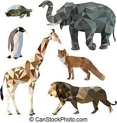 anders, set, vos, illustratie, leeuw, iconen, dieren, poly, polygonal, elefant, vector, laag, giraffe, schildpad, penguin