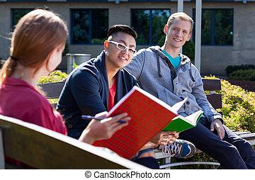 anders, student, leren, samen
