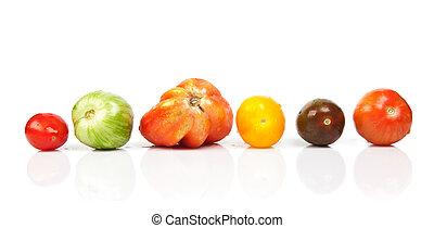 anders, tomaten, gedaantes, en, kleuren