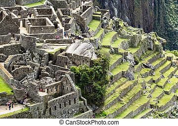 andes, antiguo, inca, ciudad, machu picchu, perú