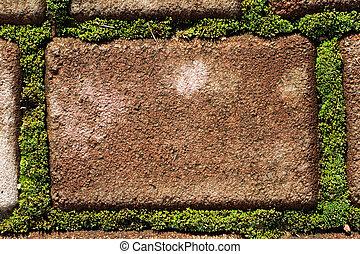 andmoss, cobblestone